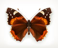 Butterfly, vector icon Royalty Free Stock Photo