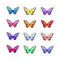 Butterfly. Vector illustration. Colorful butterfly on white background.