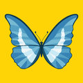 Butterfly vector illustration style Flat