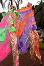 Butterfly stilt walker Royalty Free Stock Photo