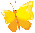 Butterfly with yellow wings Royalty Free Stock Photo
