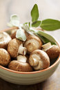 Button mushrooms bowl of fresh brown Royalty Free Stock Photography