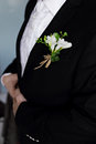 Buttonhole flower on a groom s black suit Stock Image