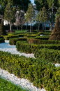Buxus labyrinth of plant with trees around inside of a park Royalty Free Stock Image