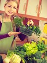 Woman in kitchen having vegetables holding shopping basket Royalty Free Stock Photo