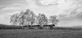 Bw wooden houses panoramic black and white meadows with Stock Photo