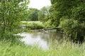 Bystrzyca River In Poland Duri...