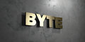 Byte - Gold sign mounted on glossy marble wall - 3D rendered royalty free stock illustration Royalty Free Stock Photo