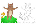 C for cat drawing coloring page kids with fill color sample isolated on white background Royalty Free Stock Photos