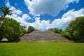Caana pyramid at Caracol archeological site of Mayan civilization in Western Belize Royalty Free Stock Photo