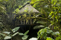 Cabana in the Ecuadorian Cloudforest Stock Image