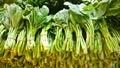 Cabbage fresh in flea market Royalty Free Stock Photo