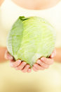 Cabbage - green cabbage closeup Stock Images