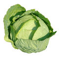 Cabbage head selected Royalty Free Stock Photo