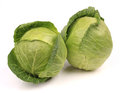 Cabbage isolated on white background Royalty Free Stock Photo