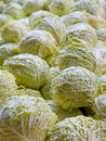 Cabbage Pile vertical Royalty Free Stock Photos