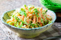 Cabbage salad cole slaw in a ceramic bowl Royalty Free Stock Photo