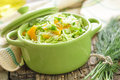 Cabbage salad with fresh dill Royalty Free Stock Photo