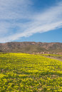 Cabo de gata at springtime in almeria natural park spain Royalty Free Stock Photo