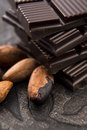 Cacao beans with milk chocolate dark Stock Images