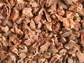 Cacao nibs Royalty Free Stock Image