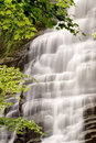 Cachoeira da floresta Fotos de Stock Royalty Free