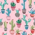 Cacti flower seamless pattern.