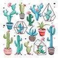 Cacti flower set.