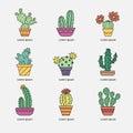Cacti in pots.