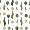 Cacti and tumbleweed seamless pattern Royalty Free Stock Photo