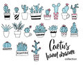 Cactus doodle set. Hand drawn vector illustration, sketch collection of house plants. Design elements.