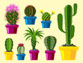 Cactus flat style nature desert flower green cartoon drawing graphic mexican succulent and tropical plant garden art