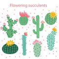 Cactus flower. Bright cacti, aloe leaves, exotic cactuses plants succulent summer desert tropical flora cartoon, botanical vector Royalty Free Stock Photo