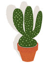 Cactus in a flowerpot Royalty Free Stock Photography