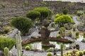 Cactus garden in lanzarote wide view of the jardin de designed by cesar manrique guatiza canary islands spain Stock Images
