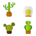 Cactus nature desert flower green mexican succulent tropical plant cacti floral vector illustration.