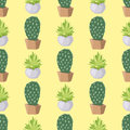 Cactus nature desert flower green mexican succulent tropical plant seamless pattern cacti floral vector illustration. Royalty Free Stock Photo