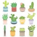 Cactus nature green succulent tropical plant vector illustration.
