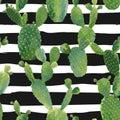 Cactus Plant Seamless Pattern. Exotic Tropical Summer Botanical Background Royalty Free Stock Photo