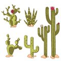stock image of  Cactus plants set of desert among stone. Cartoon vector illustration