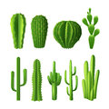 Cactus Realistic Set Royalty Free Stock Photo