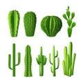 Cactus Realistic Set Royalty Free Stock Photo