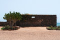 Cactus and stone walls in a marine landscape Royalty Free Stock Photo