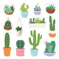 Cactus vector cartoon botanical cacti potted cute cactaceous succulent plant botany illustration isolated on white Royalty Free Stock Photo