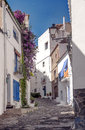 Cadaques street located in the spanish province of girona in catalonia we see balcony with flowers it is an image vertically on a Royalty Free Stock Photos
