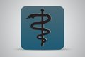 Caduceus medical symbol icon Royalty Free Stock Photo
