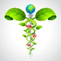 Caduceus sign with Leaf and Flowers Stock Photography