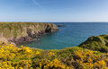 Caerfai bay pembrokeshire west wales uk near st davids and in the coast national park the coast path passes Stock Photography