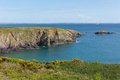 Caerfai bay pembrokeshire west wales uk st brides near st davids and in the coast national park the coast path Royalty Free Stock Image