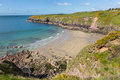 Caerfai bay west wales uk pembrokeshire near st davids and in the coast national park the pembrokeshire coast path passes Royalty Free Stock Photo